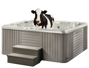 hot tub with bar